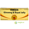 ON Ginseng + Royal Jelly 10fiole*10ml 200+300mg