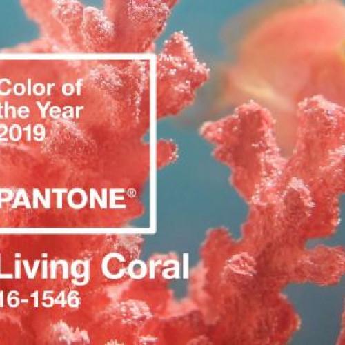 Pantone a ales culoarea anului 2019. Vezi ce simbolizeaza
