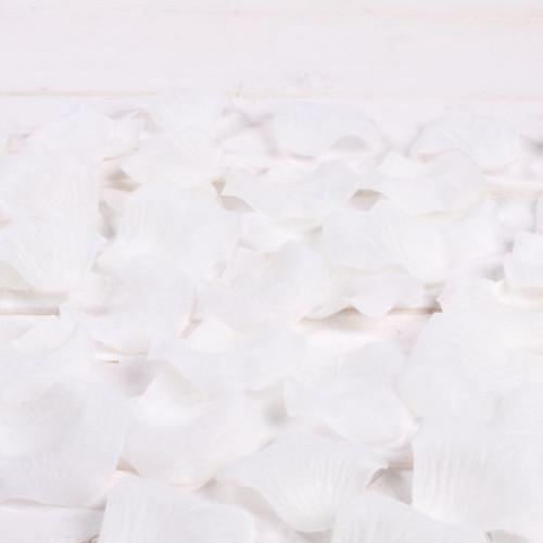 Petale trandafiri albi nunta