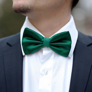 Papion verde cu striatii