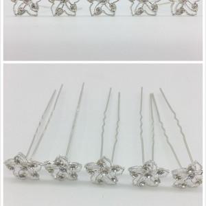 Ace de par floricele argintii