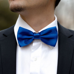Papion satinat albastru