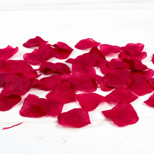 Petale trandafiri bordo nunta
